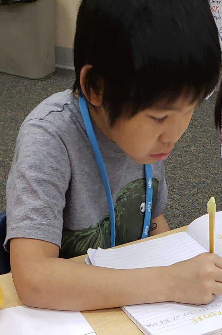 A young boy is writing at his desk in his journal.